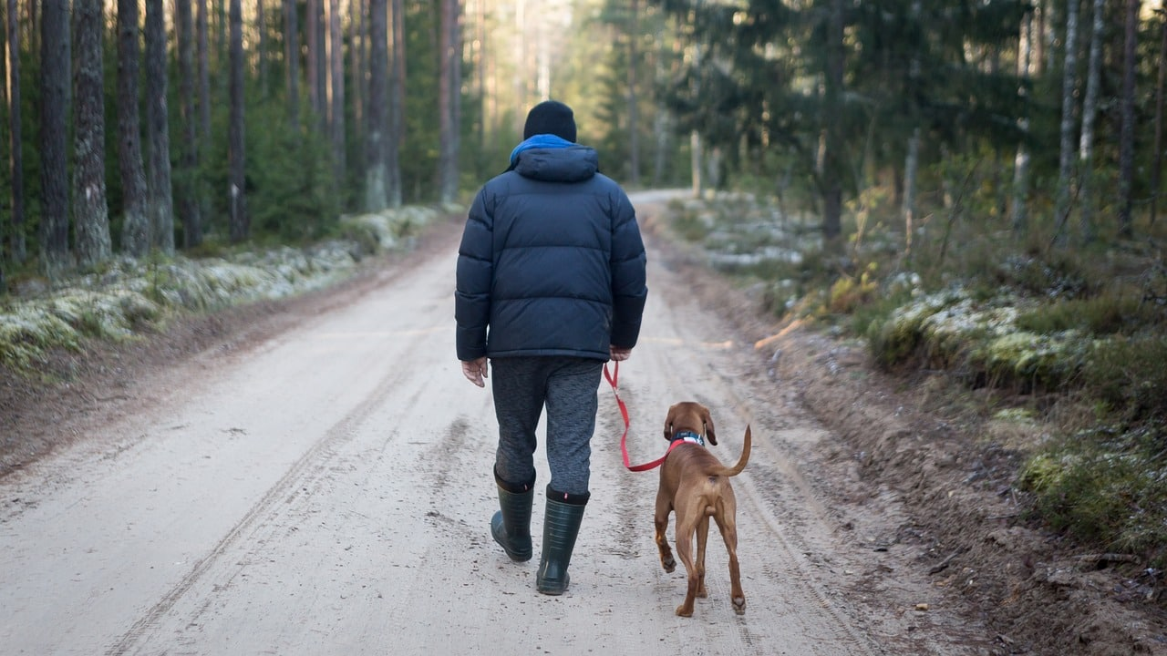outdoors, man with dog, tourism